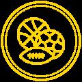 Iconos web_Mesa de trabajo 1 copia 7